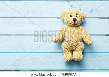 the teddy bear on blue table