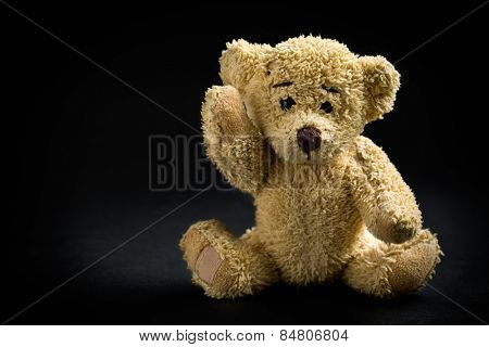 the teddy bear on black background