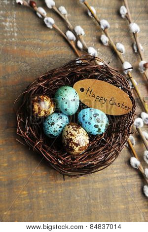 Bird eggs in nest and pussy willow flowers branches on wooden background
