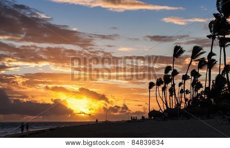 Sunrise Over Atlantic Ocean Coast With Palm Trees Silhouettes