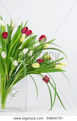 Mixed Tulips In Glass Vase