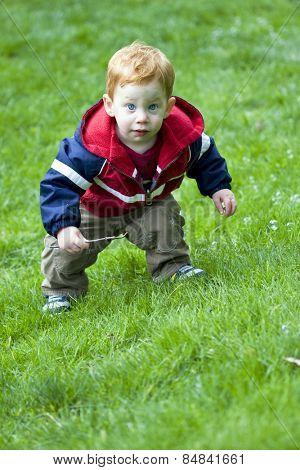 Baby boy exploring grass outside
