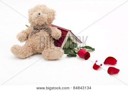 Bear Red Rose And One Good Book To Read