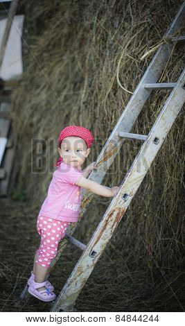 Baby Climbing Up The Ladder