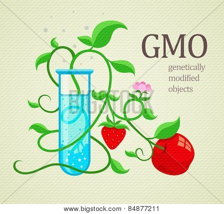 GMO genetically modified plants growing in test-tube. Eps10 vector illustration