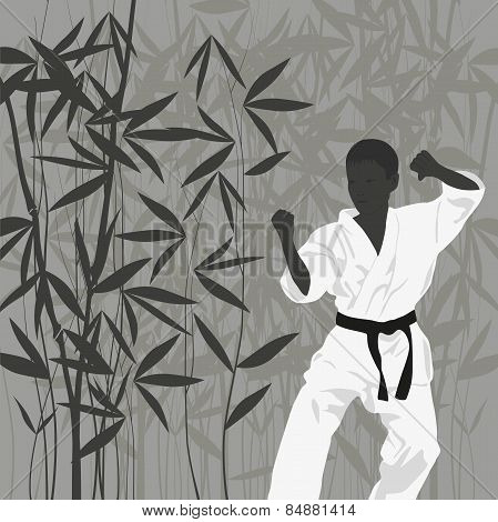 The Boy Is Engaged In Karate On A Light Background.