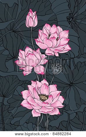 Pink Lotus And Leaves Illustration
