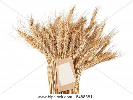 Sheaf Of Wheat With A Price Tag On A White Background