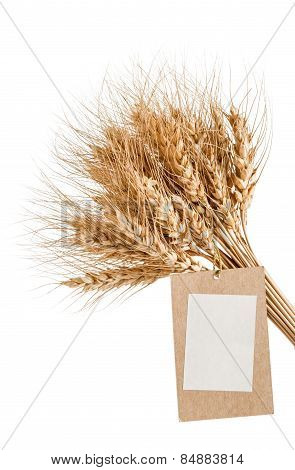 Sheaf Of Wheat With A Blank Price Tag On A White Background