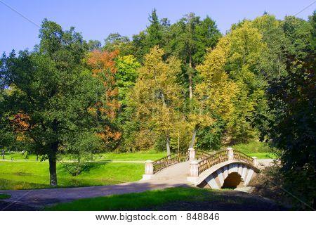 Bridge into park