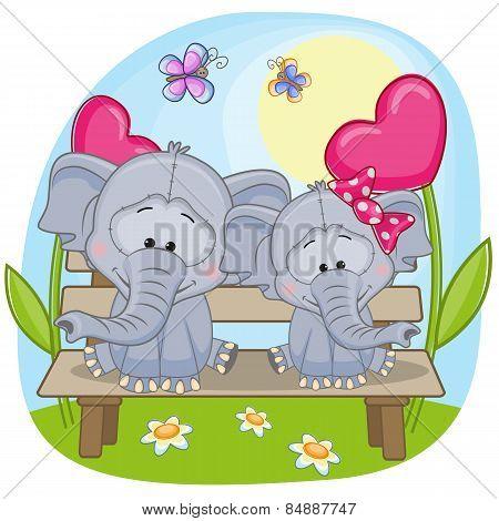 Lovers Elephants