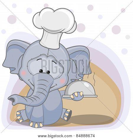 Cook Elephant