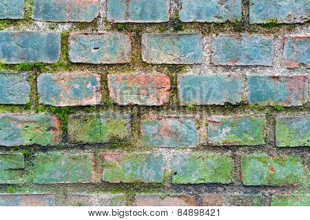 old brick wall texture with moss