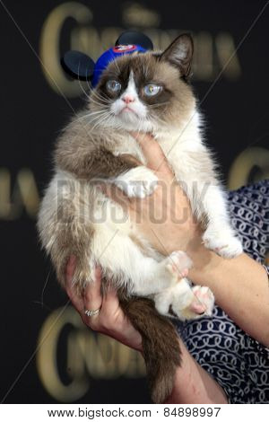 LOS ANGELES - MAR 1:  Grumpy Cat at the