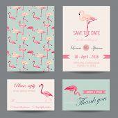 stock photo of flamingo  - Invitation - JPG