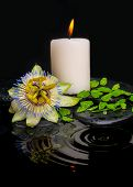 picture of fern  - spa still life of passiflora flower green leaf fern with drop and candle on zen stones in ripple reflection water closeup - JPG