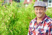 stock photo of farmer  - Portrait of a smiling professional farmer - JPG