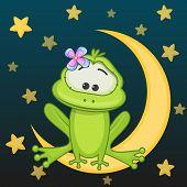 stock photo of baby frog  - Frog girl is sitting on the moon - JPG