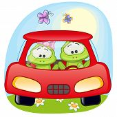 picture of baby frog  - Two Frogs is sitting in a car - JPG
