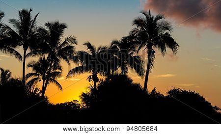 Sanibel Island Sunrise