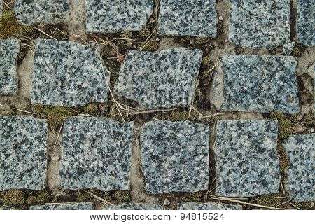 Block Pavement  With Green Moss Between Stones