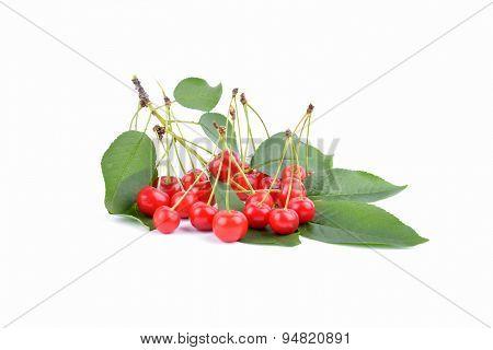 Sweet Ripe Cherry.