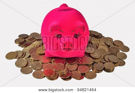 Piggy Bank On The Piles Of Ukrainian Coins On A White