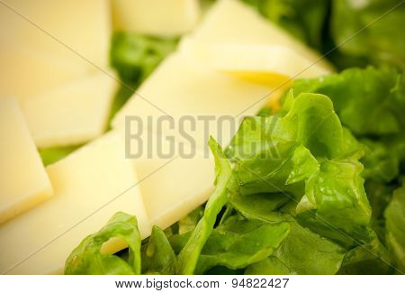 Closeup macro image of fresh healthy nutritious salad made of lettuce and hard Emmental cheese