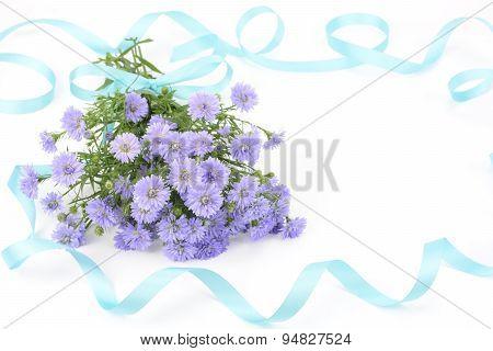 Perennial aster bouquet