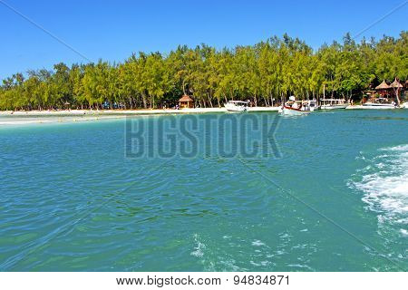 Beach Ile Du Cerfs Seaweed In Pier   Sand Isle  Sky And Rock