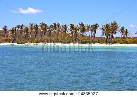 Isla Contoy   In Mexico Day  Wave