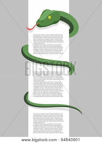 Snake wraps around. With space for text. Vector illustration. Reptile wrapped around a blank sign.
