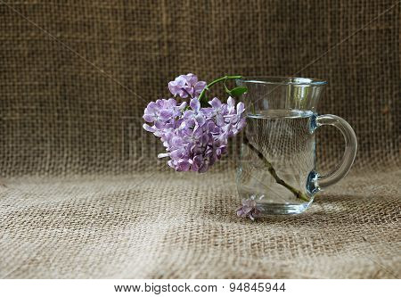 A Branch Of Lilac In A Glass Mug On A Background Meshkoviny.natyurmort Rustic Style With Space For T