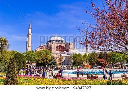 Hagia Sophia Museum, Istanbul, Turkey. Aya Sofia mosque exterior in Istanbul turkey