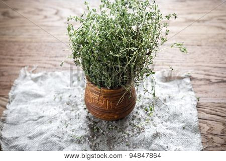 Fresh Thyme On The Wooden Background