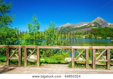Mountain lake on background of green trees