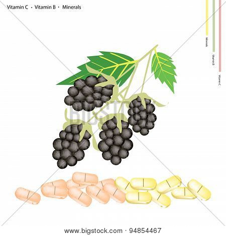 Blackberries With Vitamin K, B And Minerals