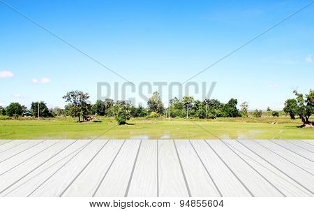White Wood Terrace With Field