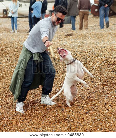 Man plays with his dog on the beach