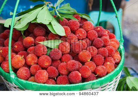 Fresh waxberry in the basket