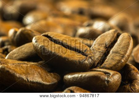 Detail Of Medium Roasted Coffee Beans