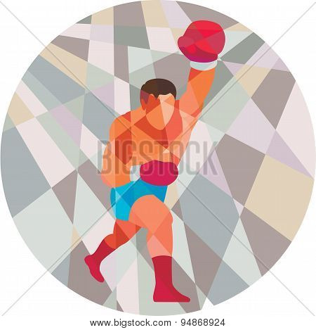 Boxer Boxing Punching Circle Low Polygon