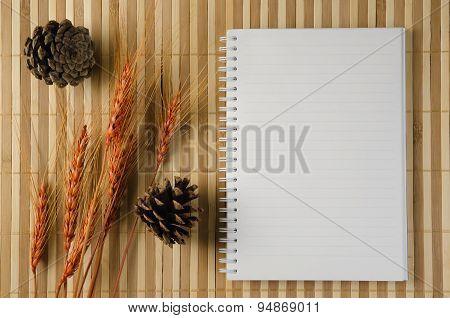 Blank Spiral Notepad Notebook