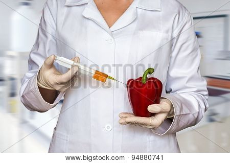 Scientist injecting liquid from syringe into red pepper