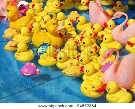 Various Toy Ducks In Water