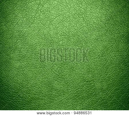 Dollar bill color leather texture background