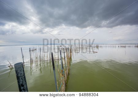 Stormy clouds over the natural park of the Albufera, Valencia