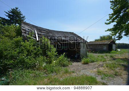 old shed with warped roof