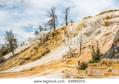 Mammoth Hot Springs In Yellowstone N.p.