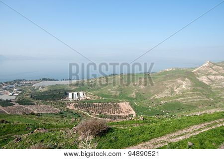 Israeli Landscape Near Kineret Lake